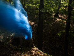 Ondrej Chmel Photography | Colourful Mist | Tree trunk with blue and white smoke bombs, May
